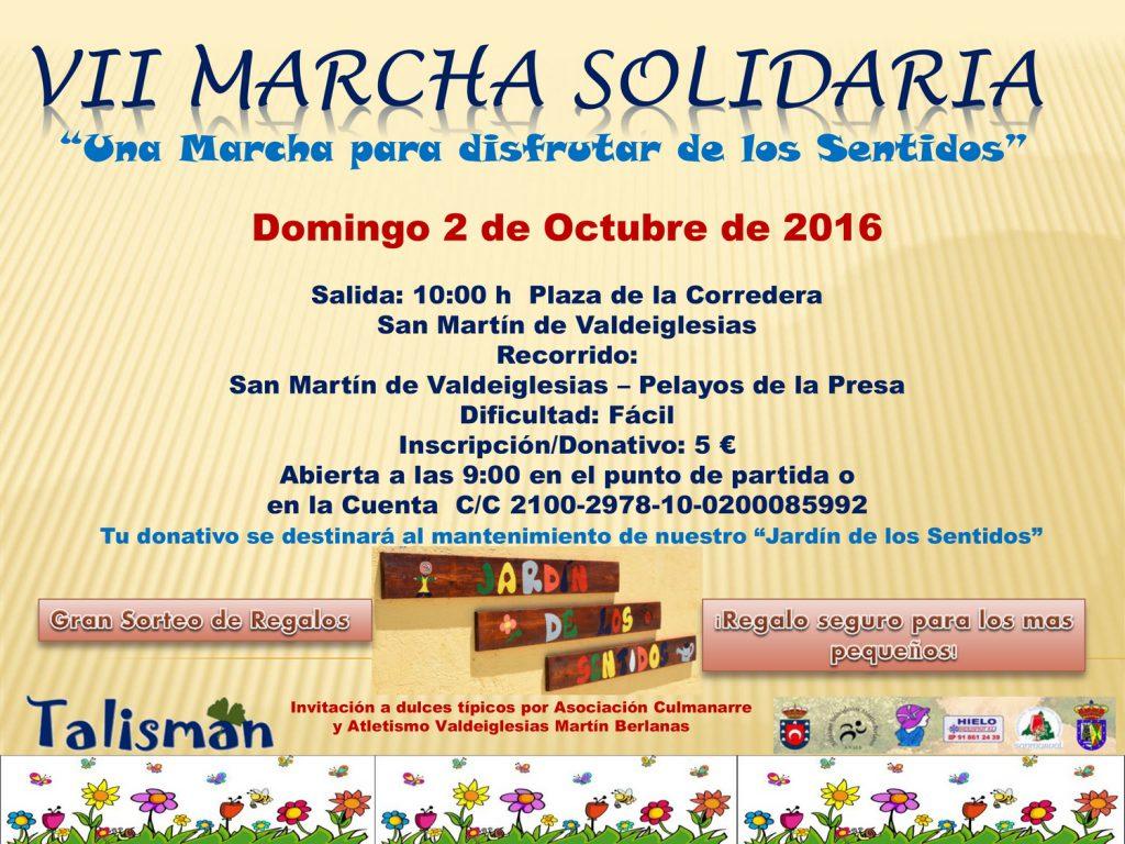 VII Marcha Solidaria