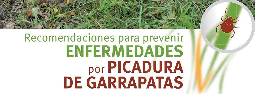 picadura_garrapata